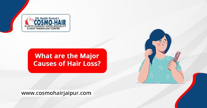 What are the major causes of Hair Loss?